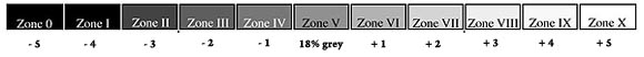 zone scale