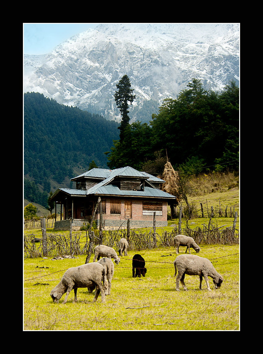 Small cottages lined the road in Betaab Valley