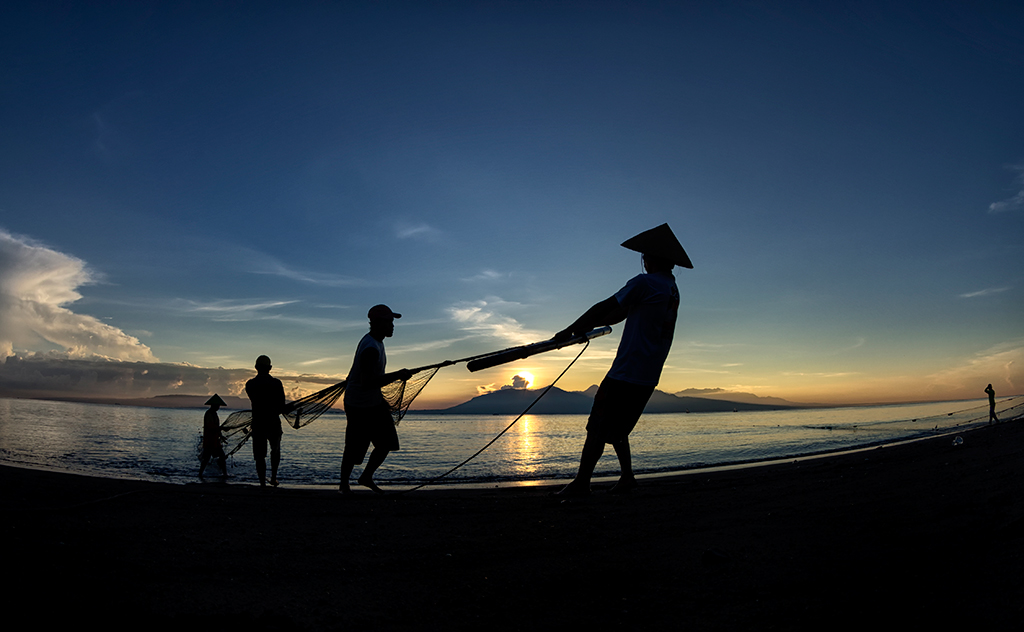 The traditional drag net fishing at Pulau Santen.