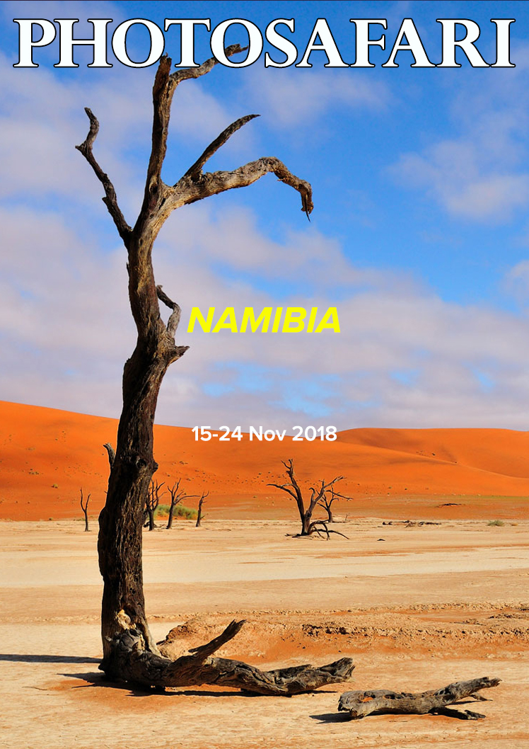 Photosafari_page_Namibia_2018